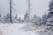 Zimowe wejście na Turbacz - Gorce z Biurem Turystycznym BADUR